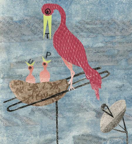 Il·lustració de Cathy Benetty per la UAB